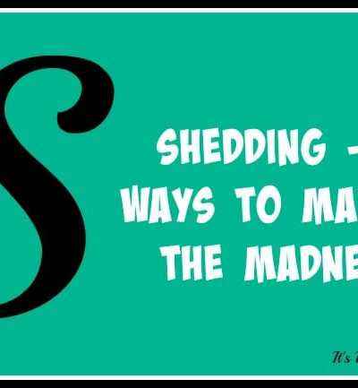 Shedding – 8 Ways to Manage the Madness [GIVEAWAY!]