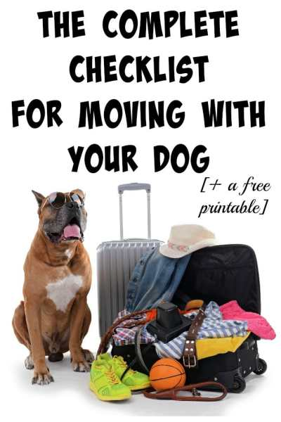 Will you be moving or taking a trip soon with your dog? Here's a complete guide to ensuring a smooth transition!