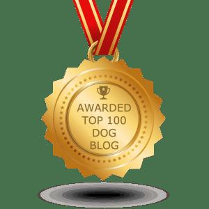 dog-transparent_1000x1000px