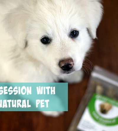 Our Obsession with Only Natural Pet