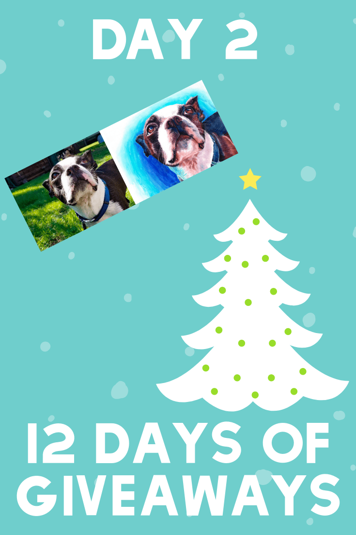 12 Days of Giveaways | Day 2