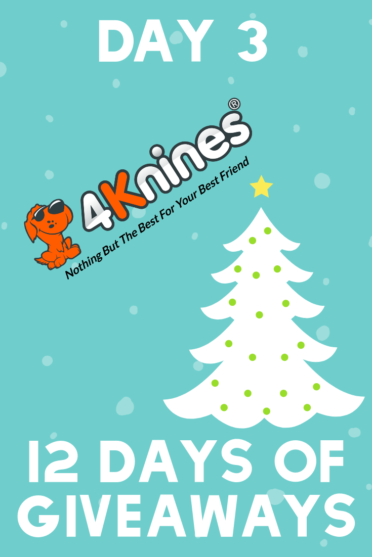 12 Days of Giveaways | Day 3