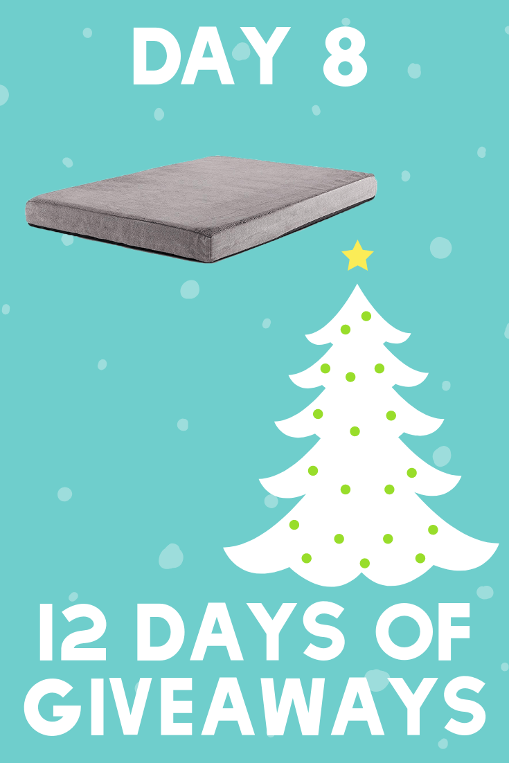 12 Days of Giveaways | Day 8