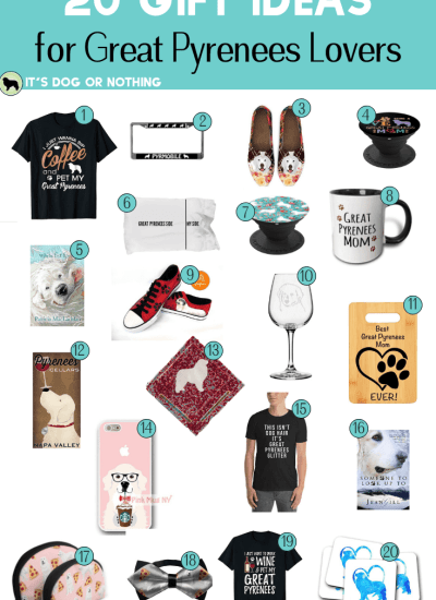 20 Gifts for Great Pyrenees Lovers