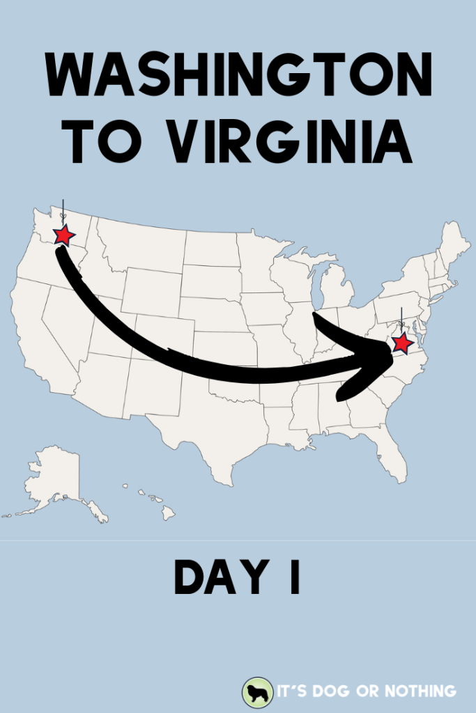 A recap of day one of our move from Washington to Virginia with four Great Pyrenees and a cat! | It's Dog or Nothing