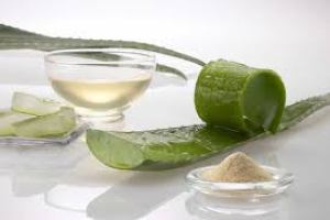 aloe vera for thick and long hair