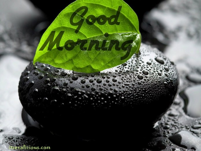 Good Morning Images - high resolution for download