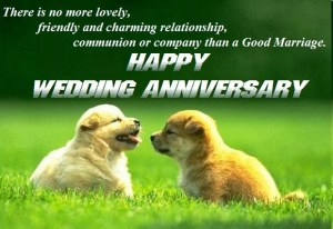 Top 10 Happy Marriage Anniversary Wishes Images Quotes