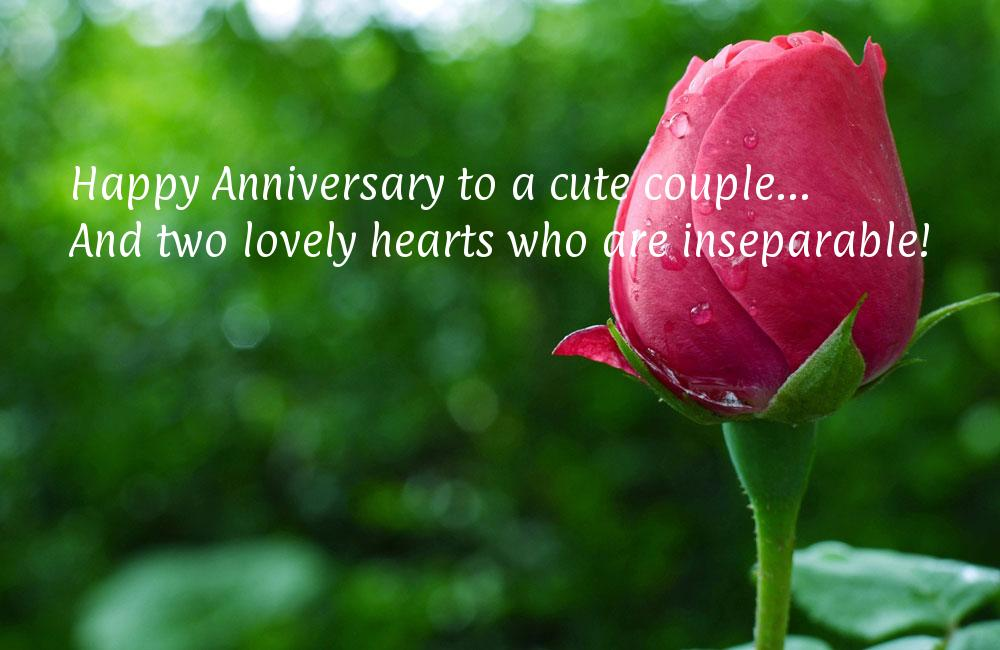 Top happy marriage anniversary wishes images quotes