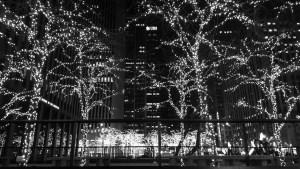 NYC Christmas Lights on trees