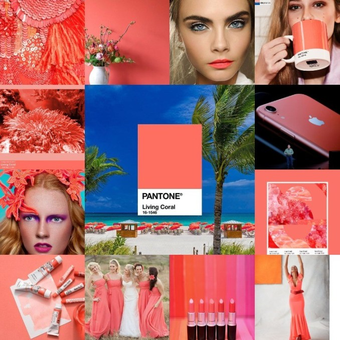Coral - the color of the year 2019 version Pantone