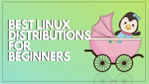 Best Linux Distribution For Beginners