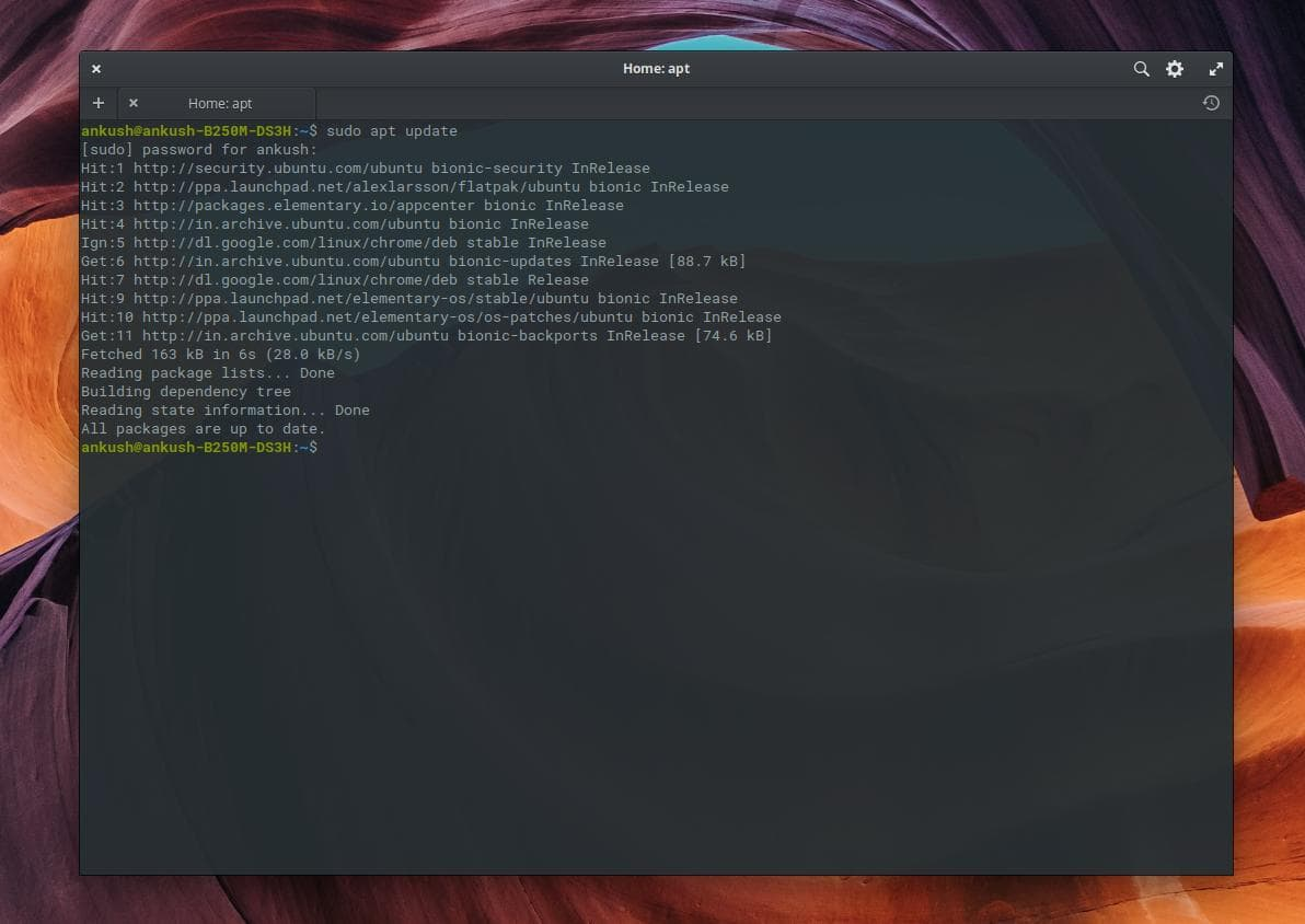 terminal showing system updates in elementary os 5 Juno