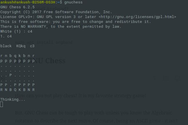 GNU Chess is a chess game that you can play in Linux terminal