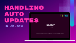 Handle Auto Updates Ubuntu