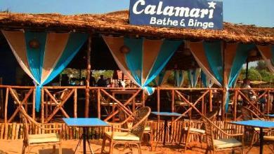 Photo of CALAMARI
