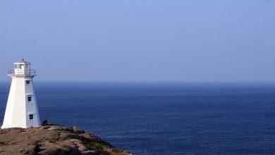 Photo of Goa Lights up the Ocean