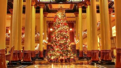 Photo of O Christmas Tree, Why Do We Decorate Thee?