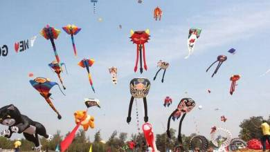 Photo of The Goa International Kite Festival makes the skies come alive