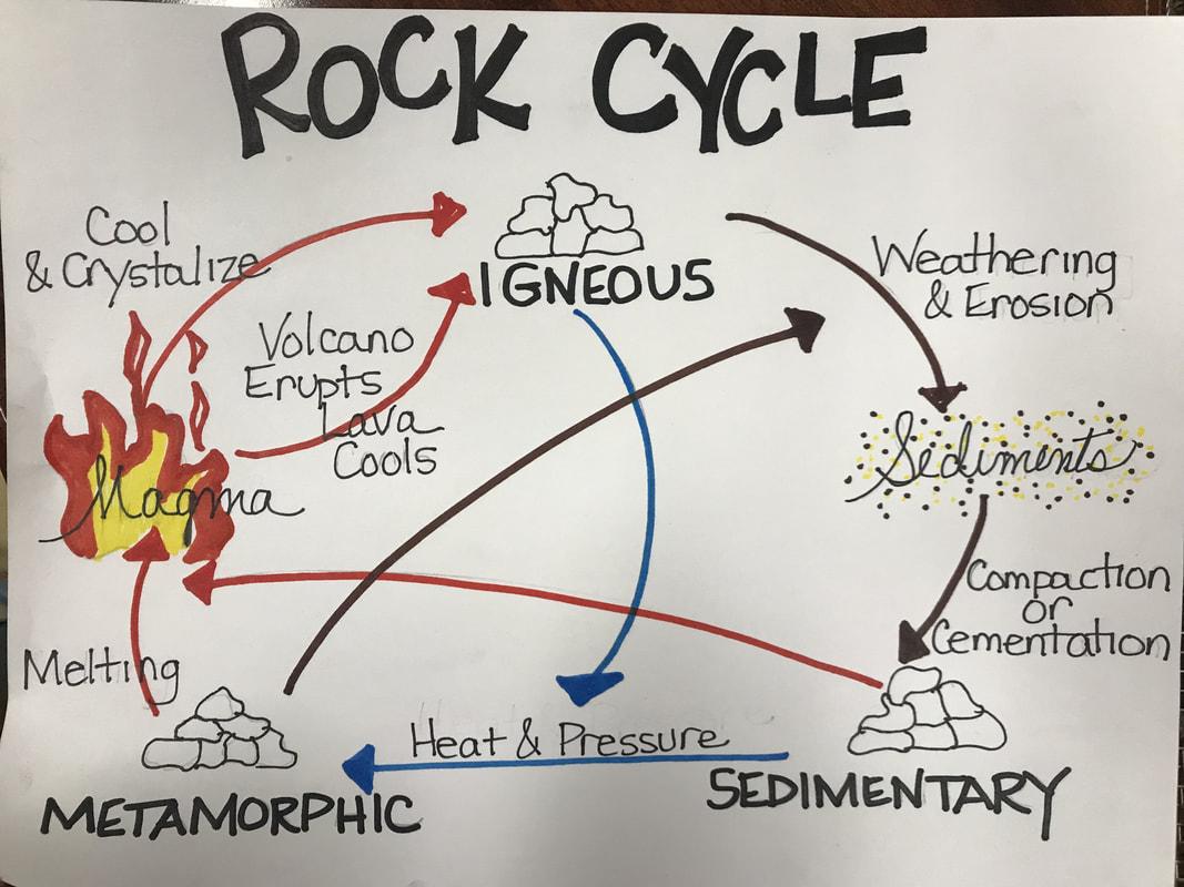 Ms Ryder Science Homework