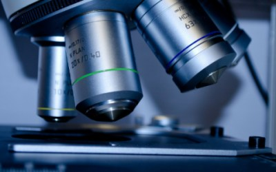 The Importance of Biotech Advancement