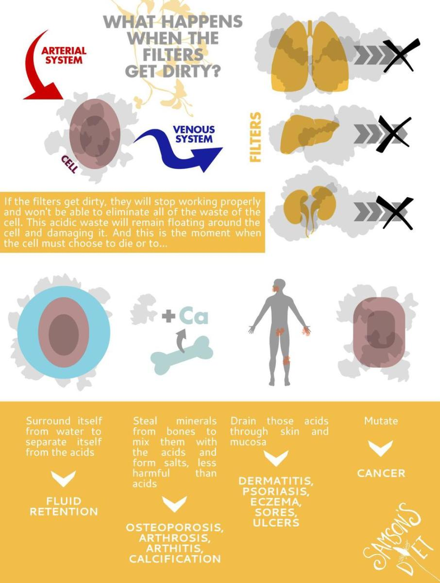 HOW DOES CANCER START? Infographics for you to easily understand how cancer starts from the very first cell