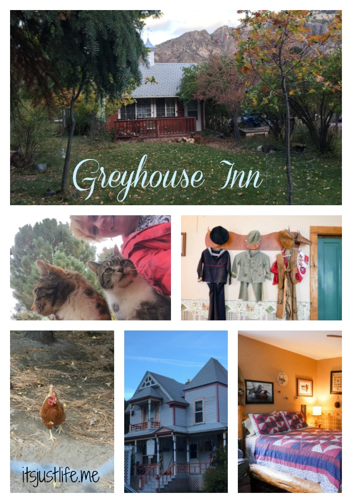greyhouse-inn