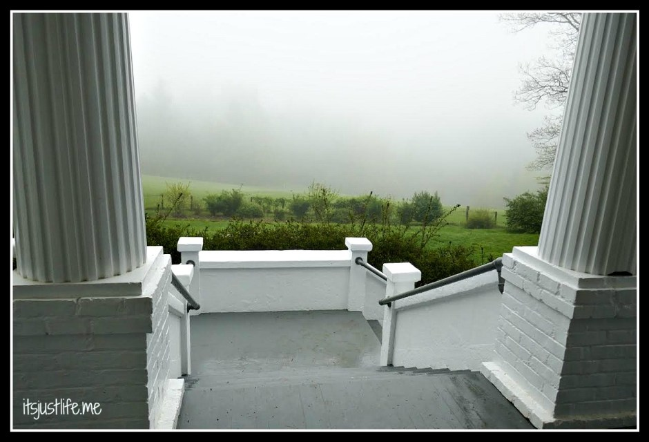 Perhaps Mr. Sandburg stepped out onto his porch to take in the view and instead of the mountains was greeted by a fog such as this.  I can totally understand how Fog came to be written if this was the case.