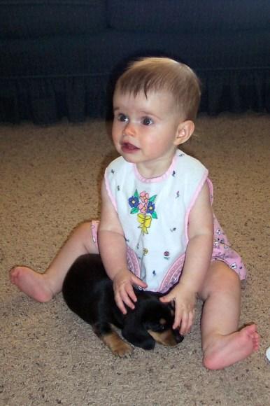 Abbye, puppy