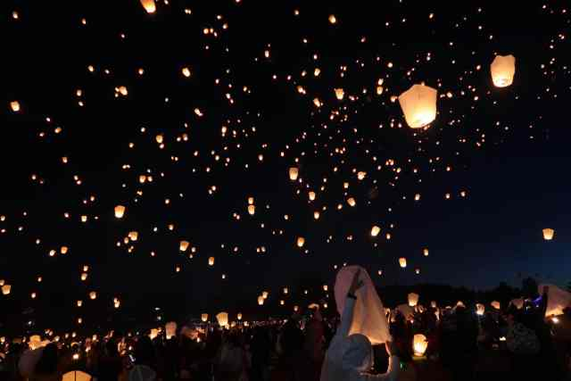 The Lights Fest | It's Megan Blog | #lanternfestival #lanterns #lightsfestival #tangled