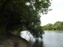 Dnister river