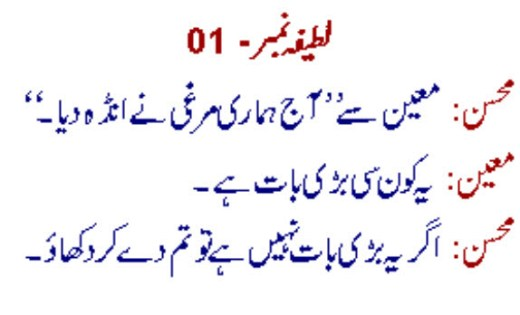 Funny Things To Share At Facebook With Friends Dirty Urdu Joke Picture