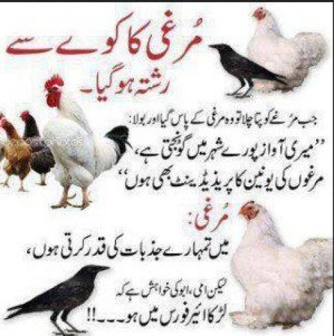 world-best-urdu-joke-2013