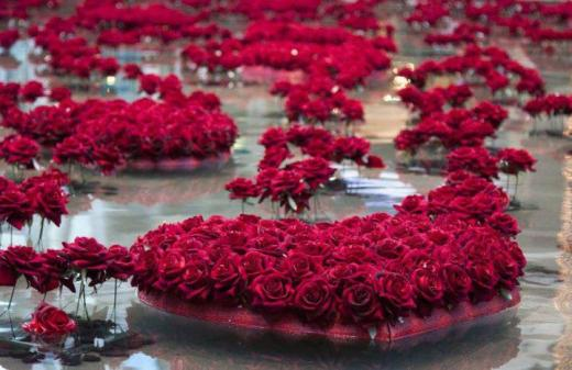 World Most Beautiful Red Rose Wallpaper 2013 2014