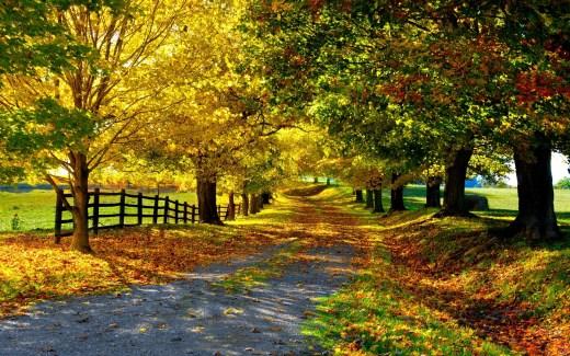 autumn-wallpaper-for-desktop-2013-2014