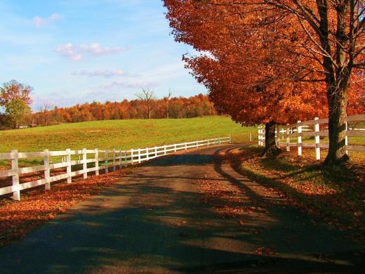 natural-autumn-season-pictures-2013-2014