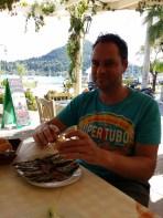 Sardientjes eten in de haven.