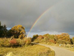 We zagen een regenboog. Alsof papa B. ons aanmoedigde.