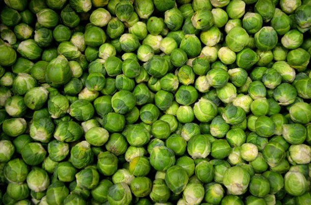 small-sprouts