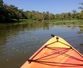 10 Things to Know About Kayaking in Houston