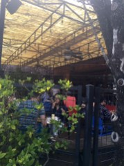 Cafe Brasil front patio