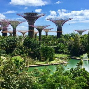 Singapore in 24 Hours — Beaches, Hawker Centers, and Botantical Gardens