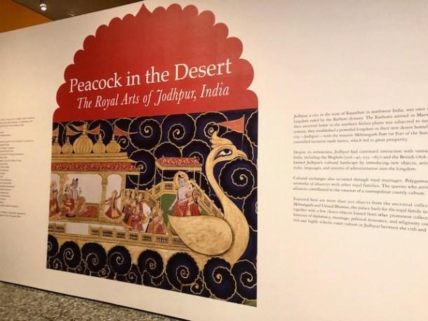 Peacock in the Desert - Museum of Fine Arts Houston