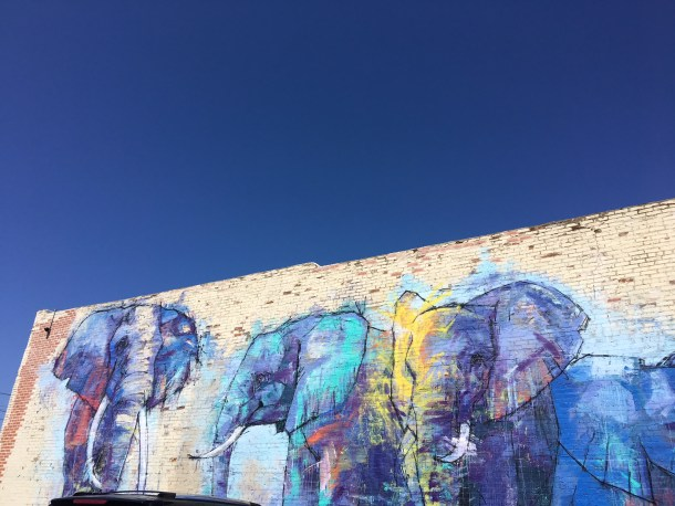 Dallas Margarita Mile Murals Deep Ellum
