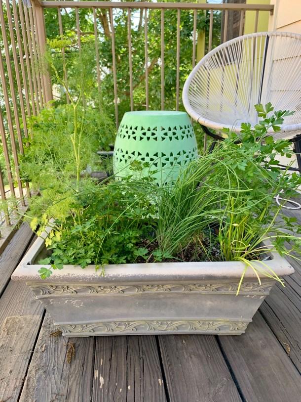balcony garden in houston