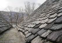 Rowardennan roof ridge