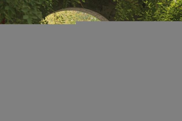 Куда пропадают иностранцы в парке лотосов. Баодин достопримечательности