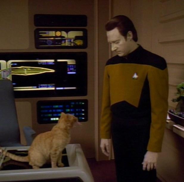 kitty star trek