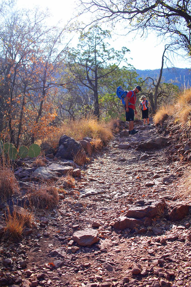 Big Bend National Park Lost Mine Trail