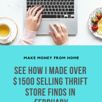 How I made Over $1500 Reselling Online in February